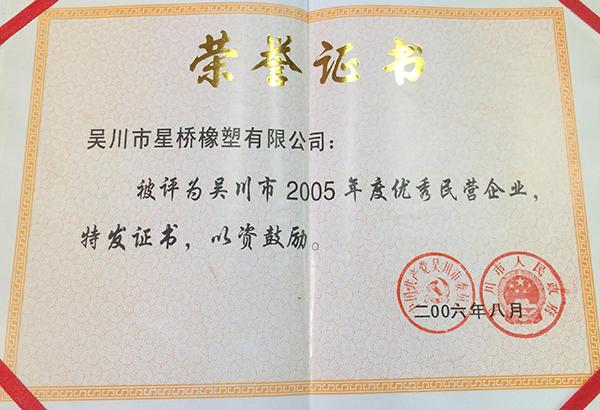 湛江市乐动体育官网下载app橡塑有限公司被评为吴川市2005年度优秀民营企业。